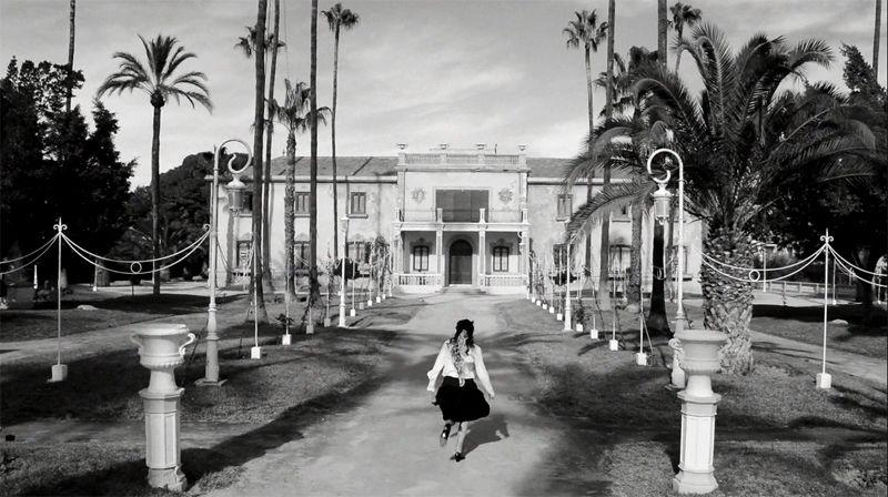 Cortos alicantinos, largos, cine en la calle, ciclo Mariano Barroso... y más en el Festival de Alicante en CINE