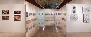 Se extiende por más de un mes la exposición fotográfica del CFA en La Lonja en FOTOGRAFIA