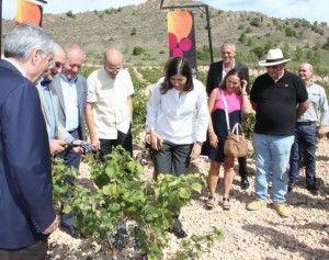 María Blasco amadrina el inicio de la vendimia en Alicante en AIRE LIBRE