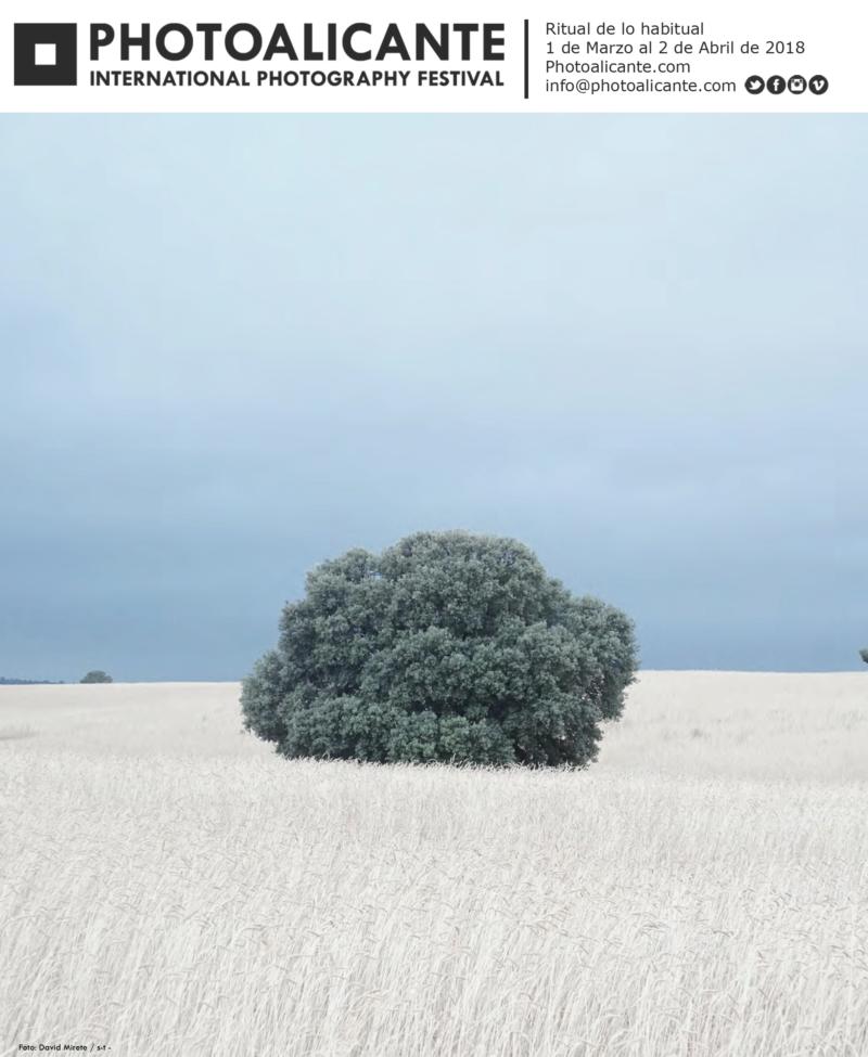 Vuelve PhotoAlicante, una apuesta por la innovación alicantina en FOTOGRAFIA