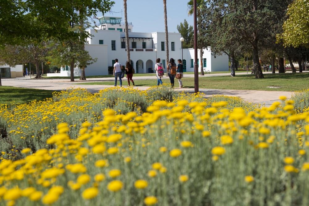 'Campus de la Universidad de Alicante', un paseo completo de la mano del nuevo libro de Publicaciones de la UA en LETRAS
