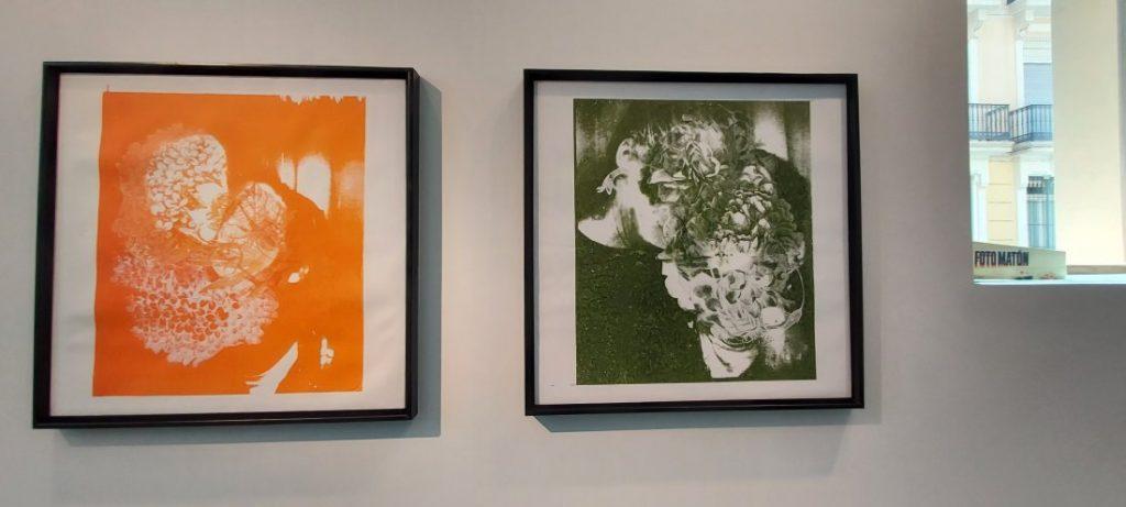 David Gil recupera la esencia de la serigrafía en la nueva exposición de la Casa Bardín en ARTE DESTACADOS